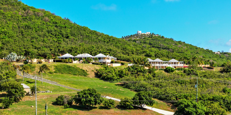 Hillside View of Estate