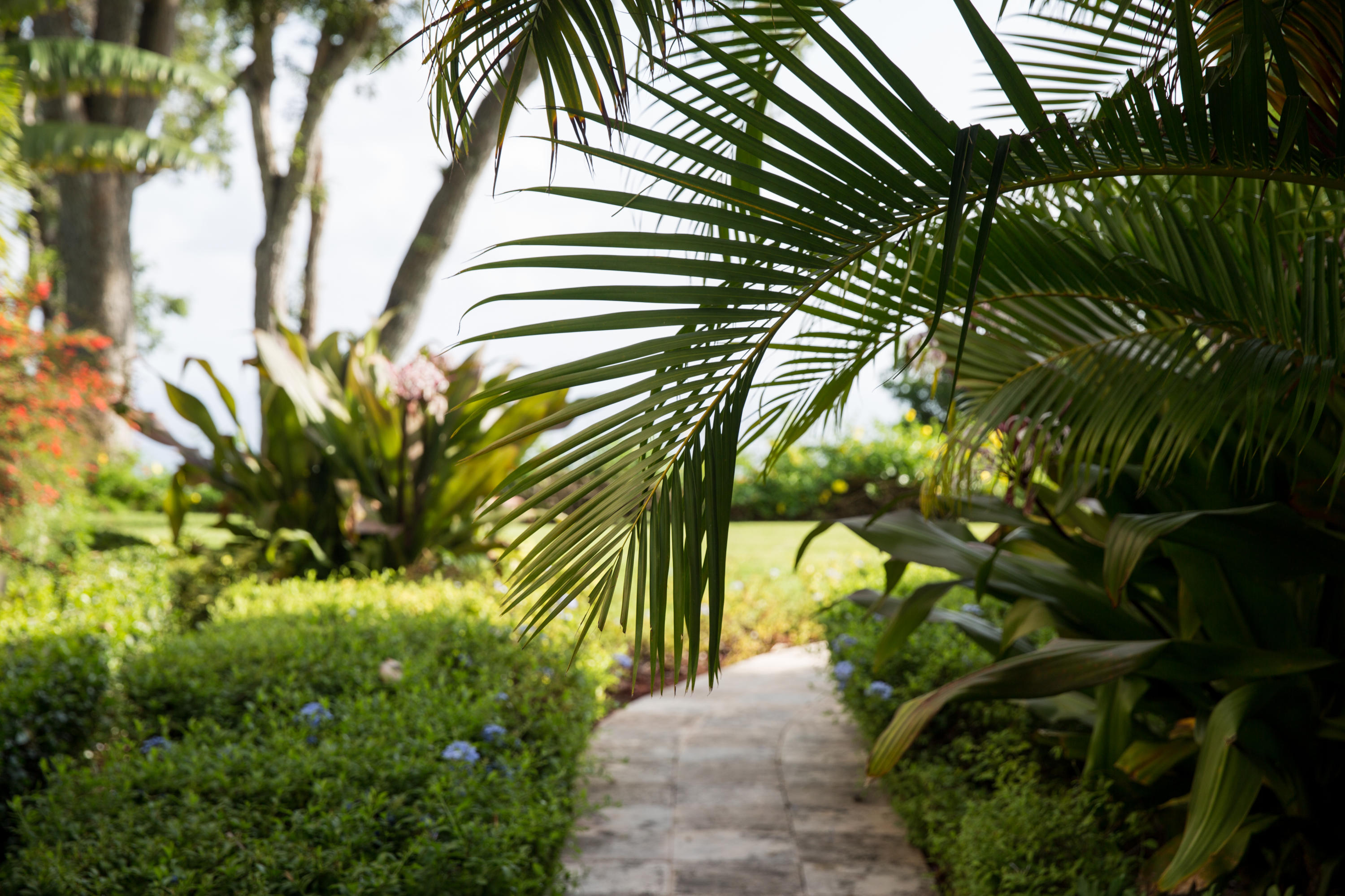 Tropical on path to pool