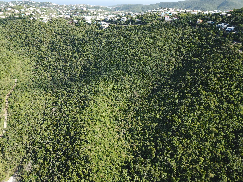 Tutu Bay Land