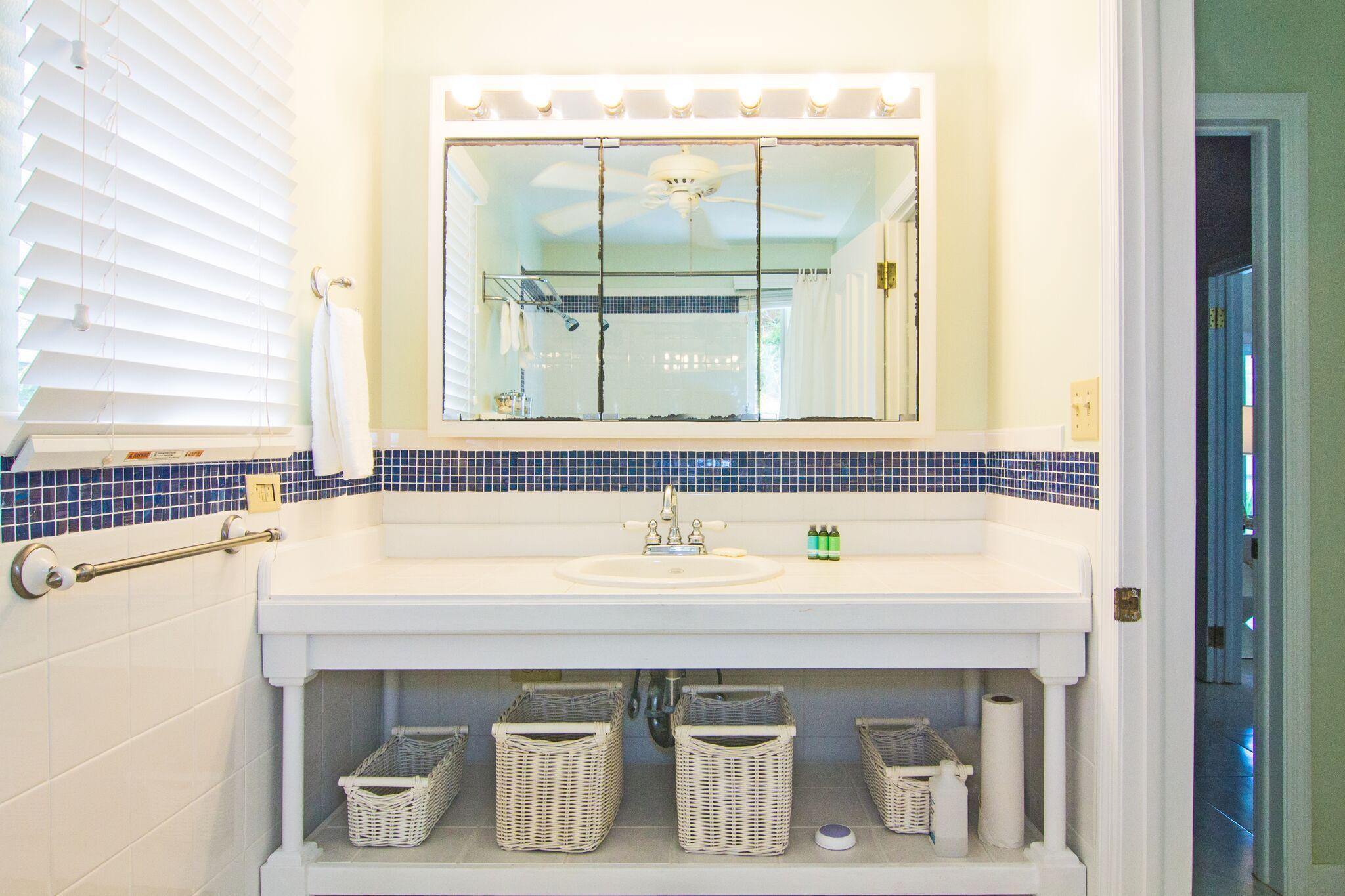 1-bdr apt shower