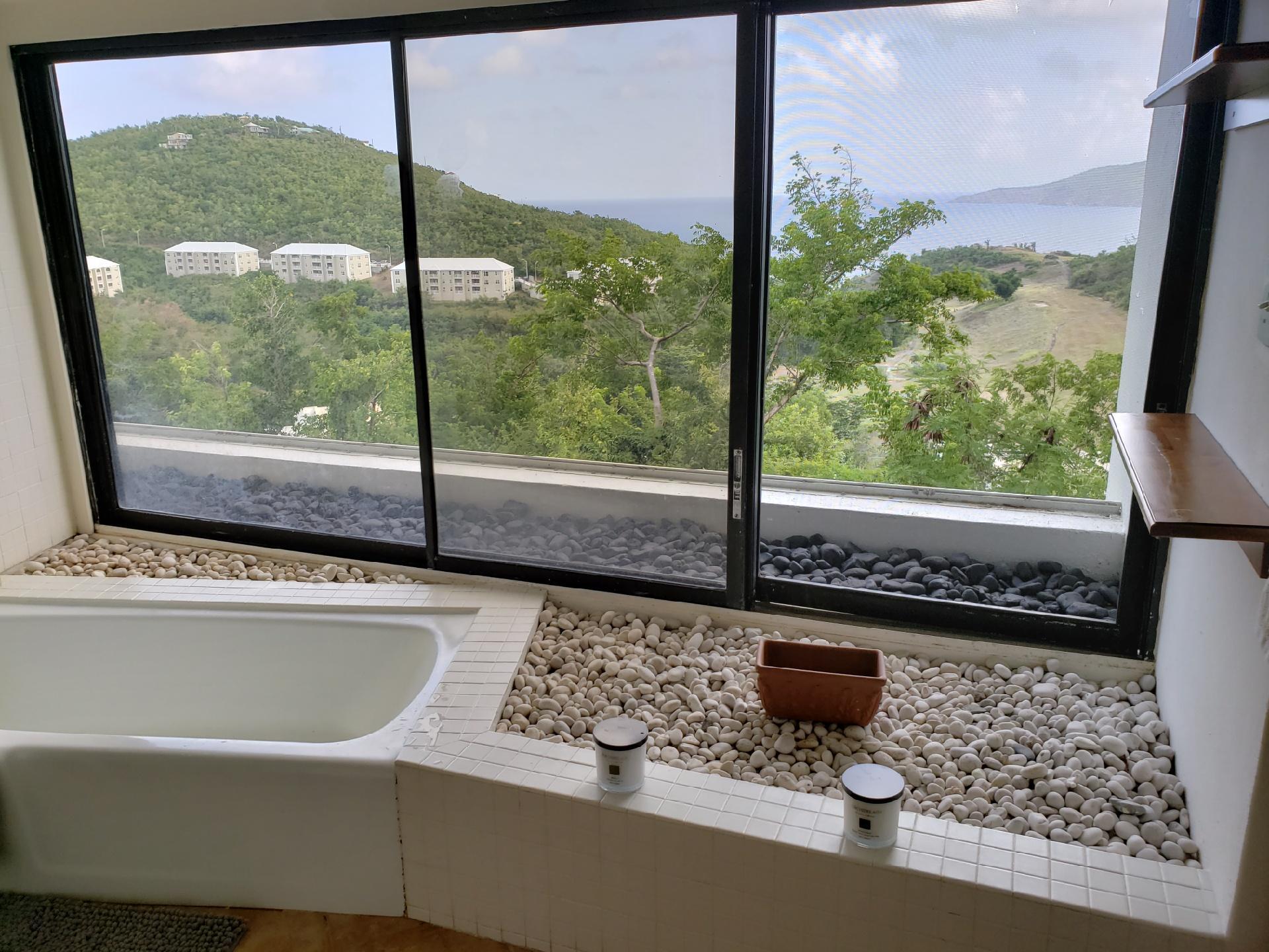 Bathtub w/view