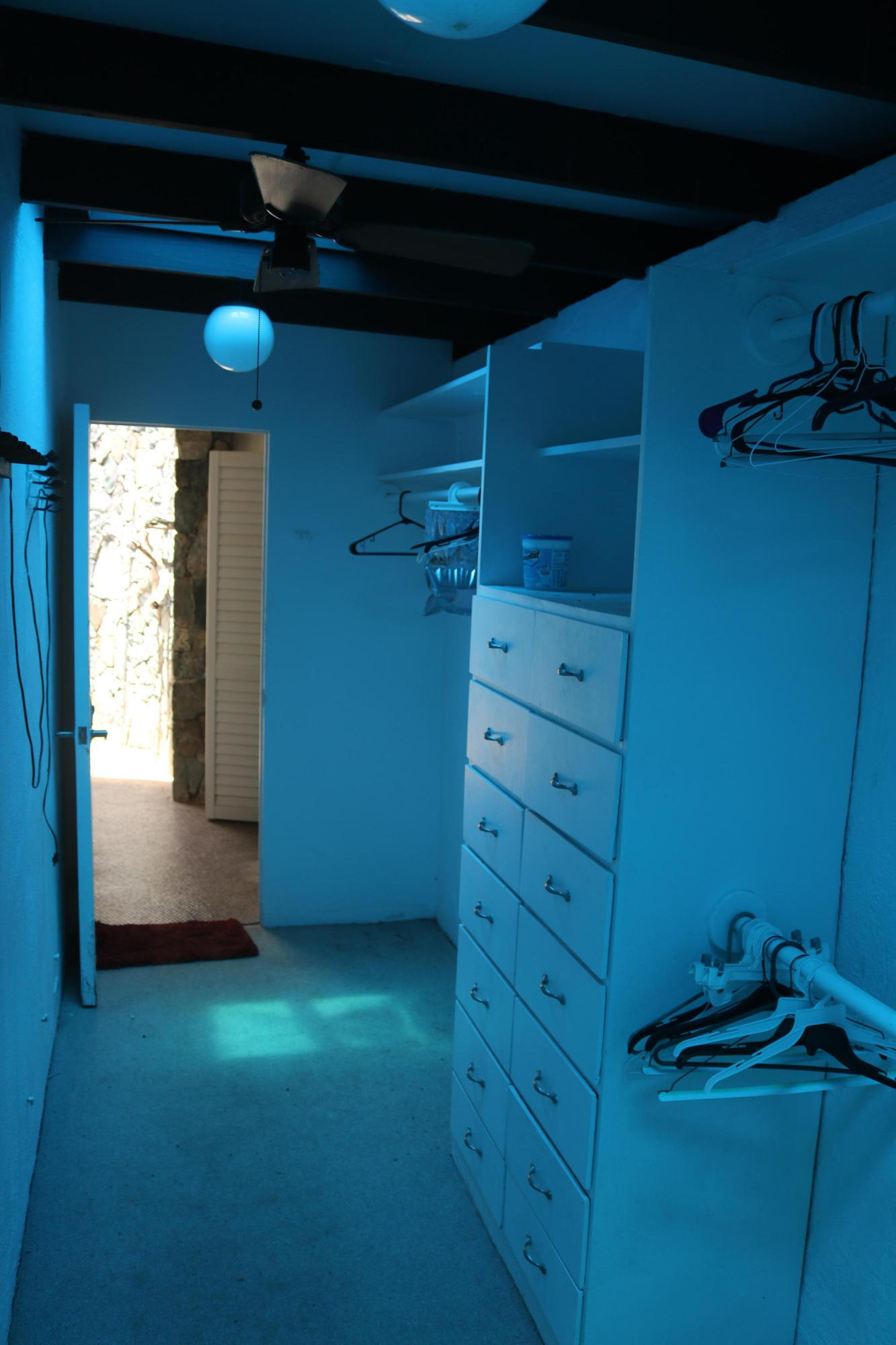 Walk-In Closet (Blue Due to Tarp)