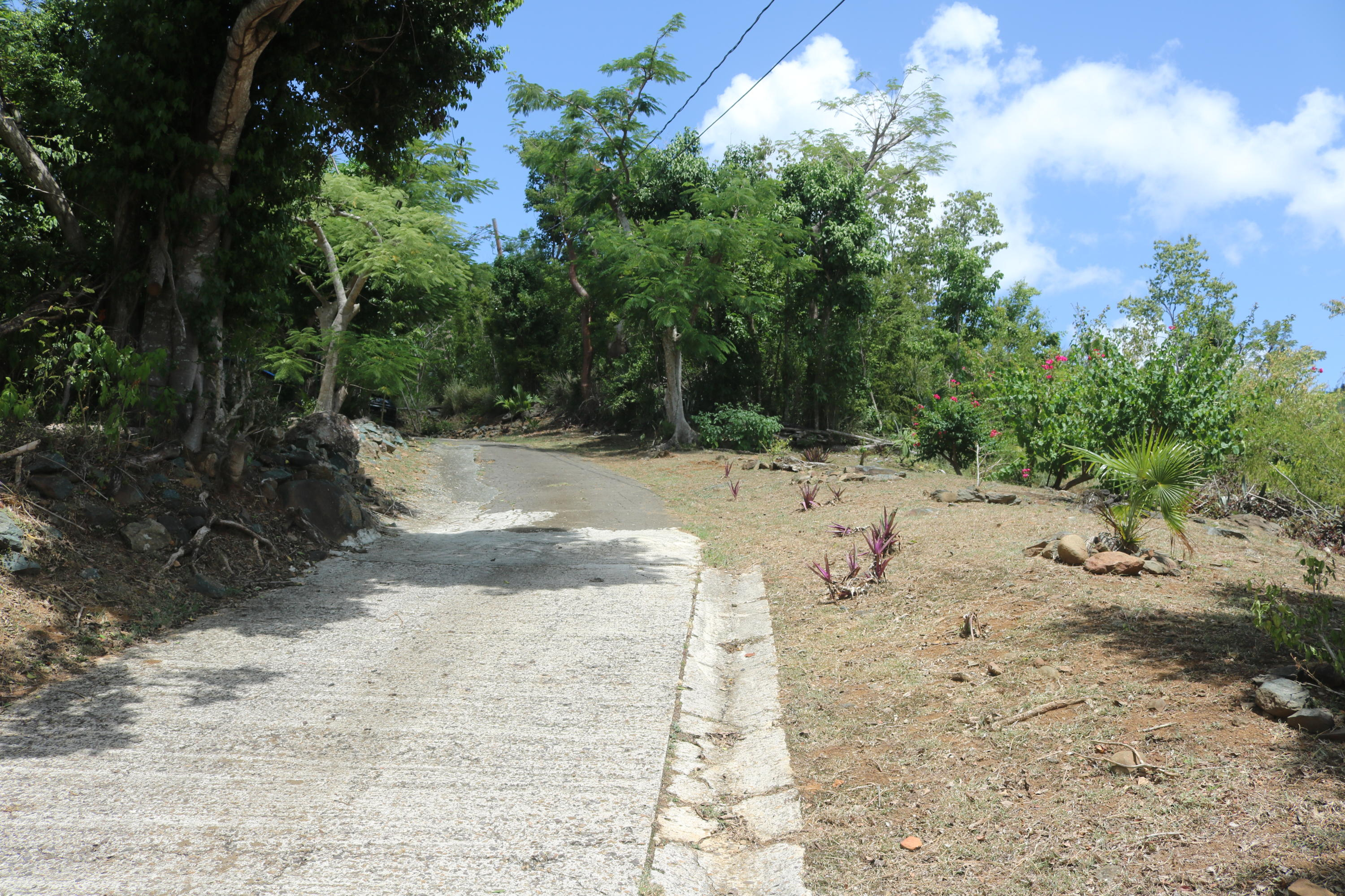 Paved Driveway to House