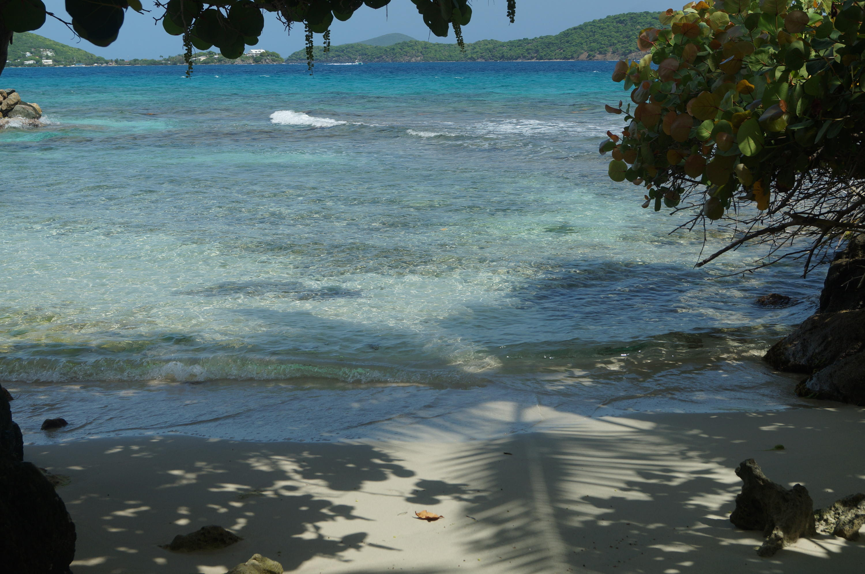 Private Ocean Entrance!!