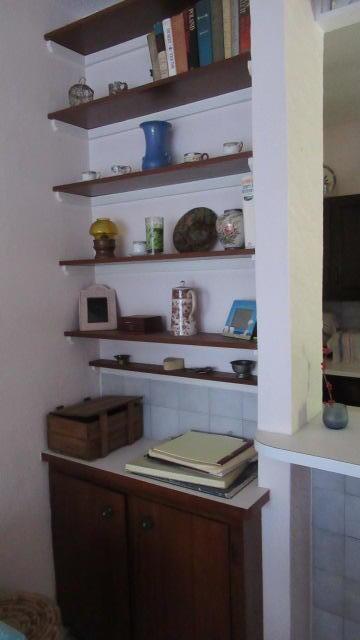 Custom Cabinet and Shelves