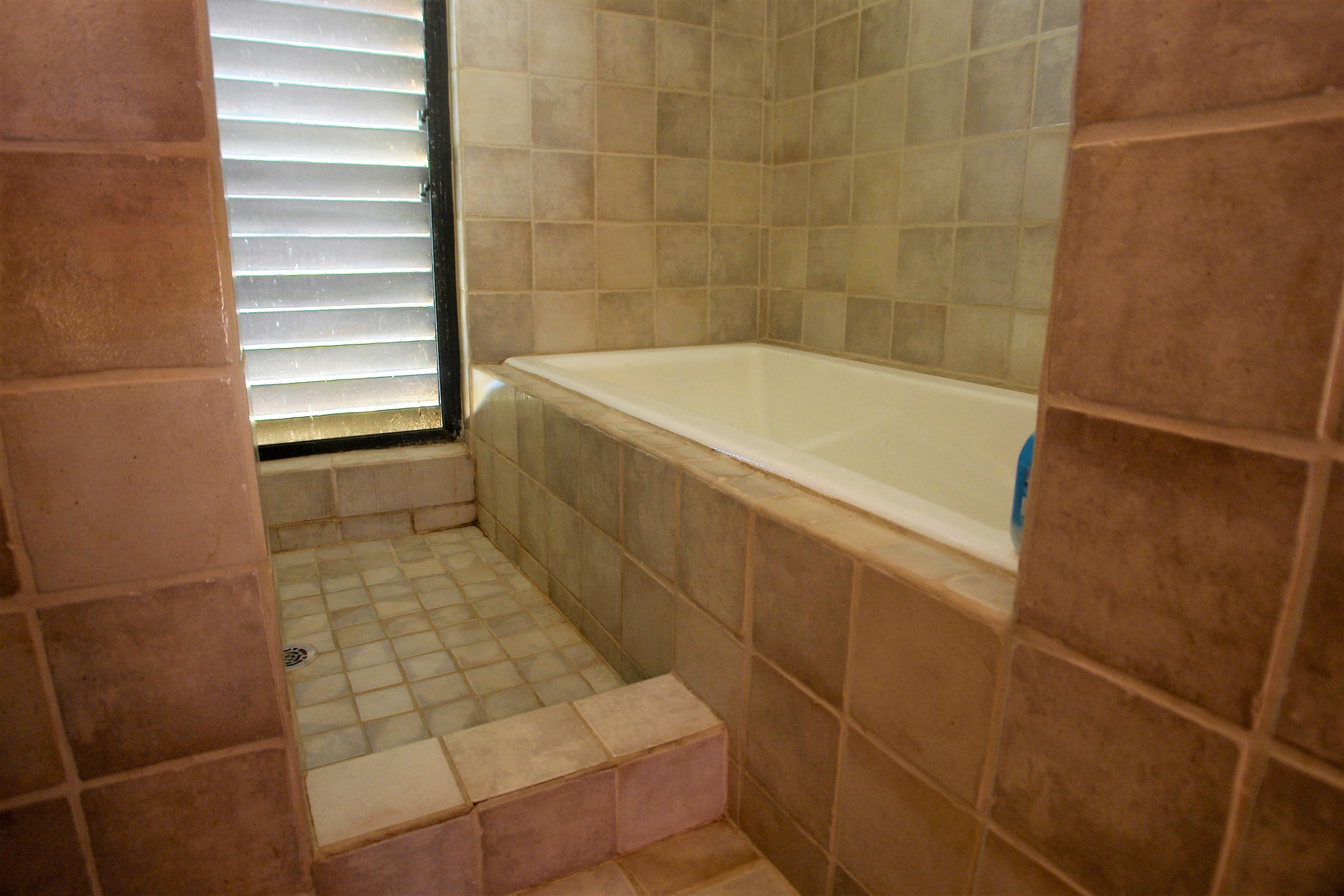 shower and huge soaking tub