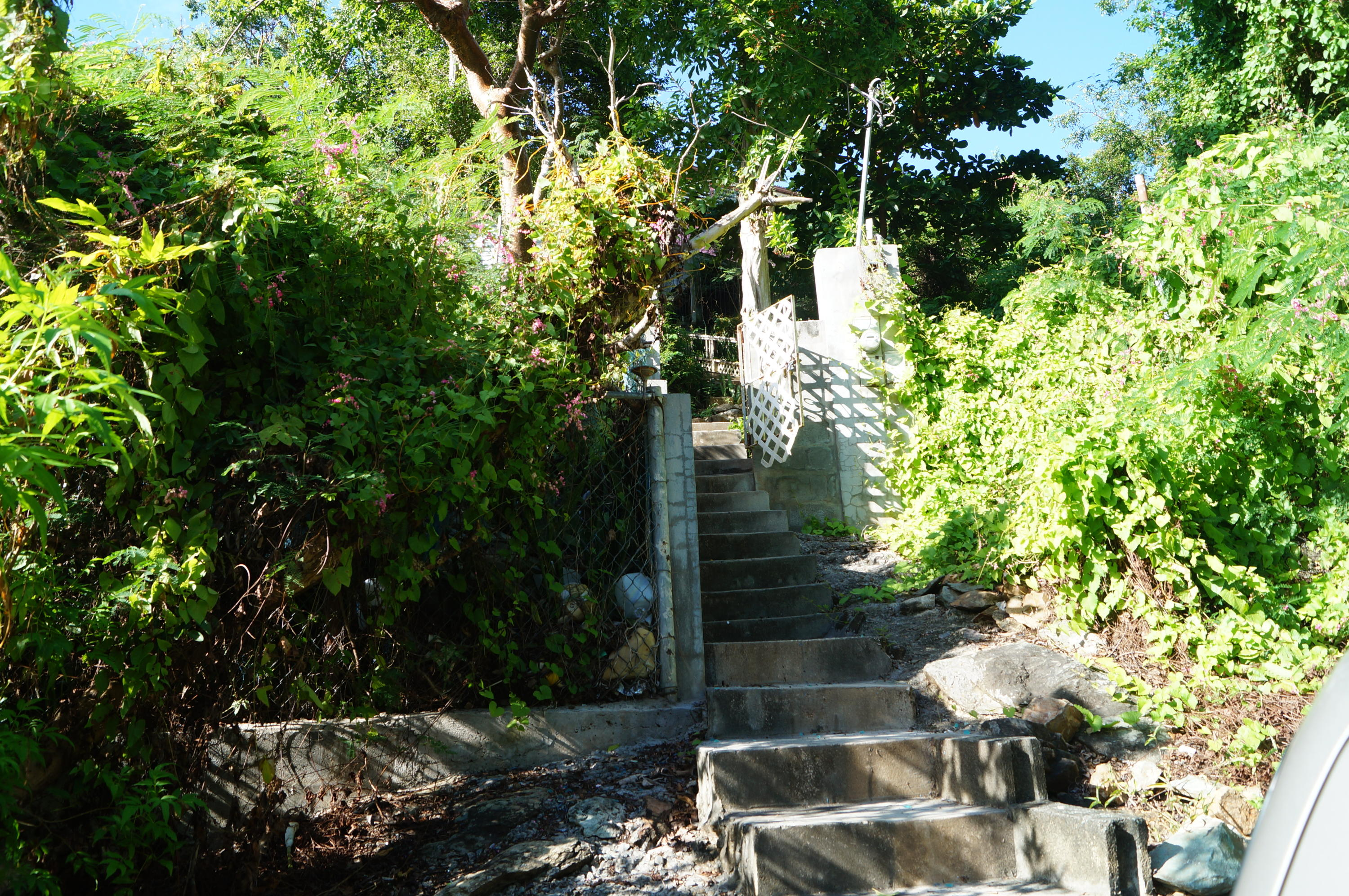 STAIRS FROM LOWER ROAD