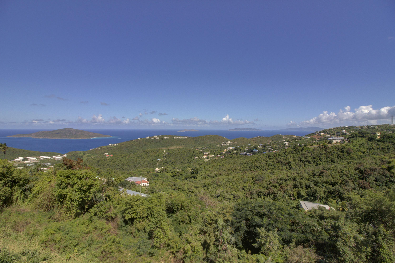 Down Island View
