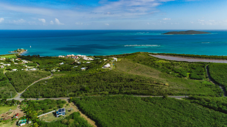 Rem 29 Green Cay EA