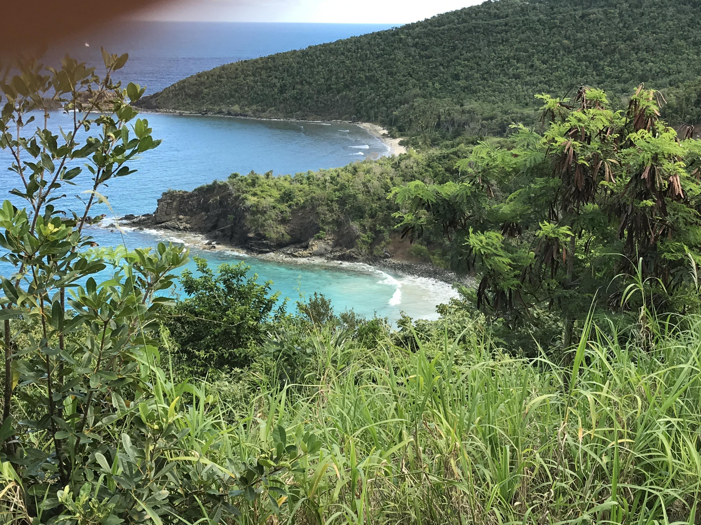4-46 Botany Bay WE