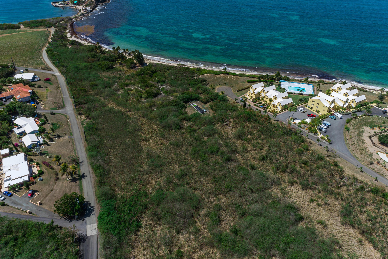 Rem 21etal Green Cay EA